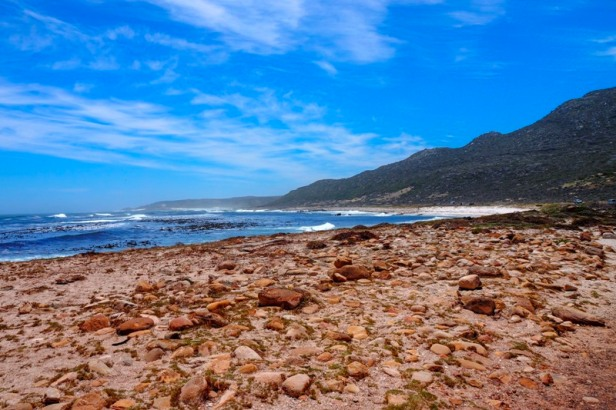 a beach at Cape Point National Park South Africa