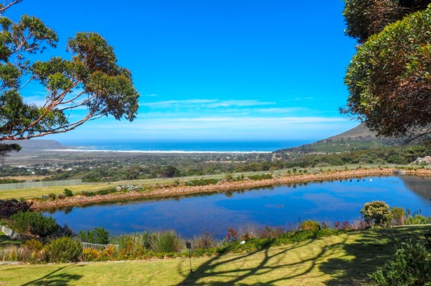 cape point vineyards overlooking Noordhoek beach