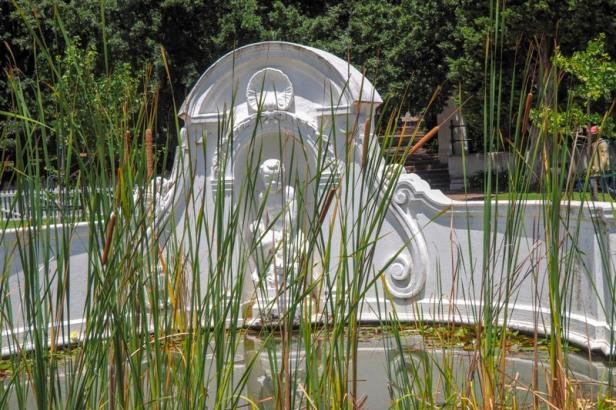 Company gardens in Cape Town
