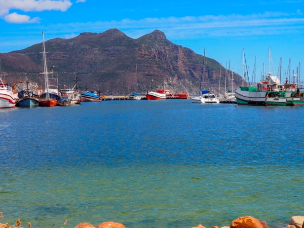 kalk bay harbour in south africa