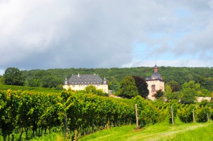 a view at Schloss Vollrads in Rheingau