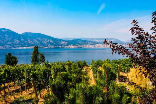 view over Lake Okanagan in British Columbia