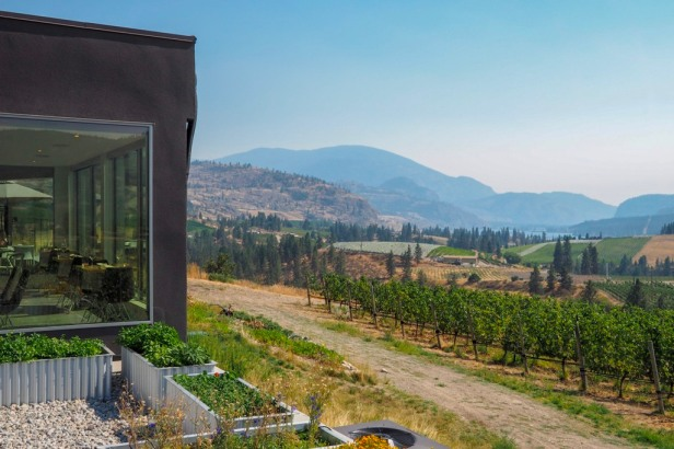 Liquidity Winery Lake Okanagan