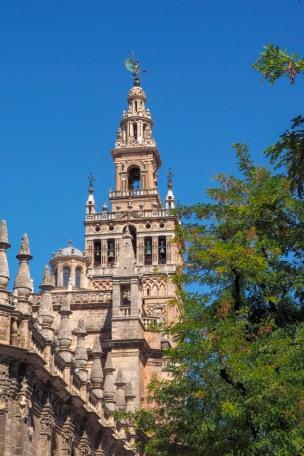 a view at la giralda in Sevilla