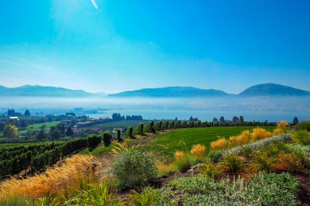 View from Poplar Grove Winery Lake Okanagan