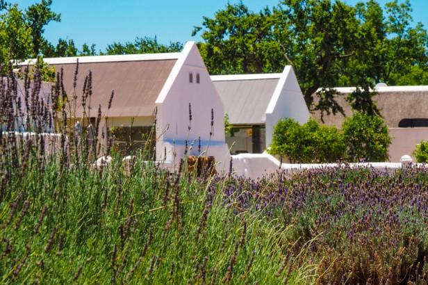 Babylonstoren, Western Cape