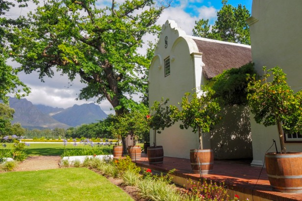 Blaauwklippen Vineyards, Western Cape Winelands