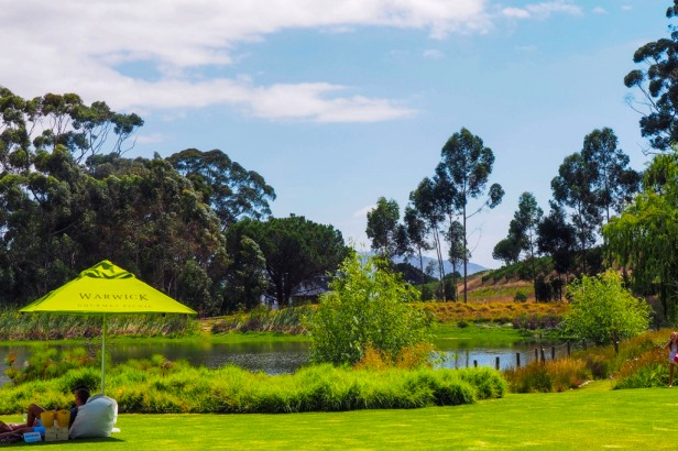 Warwick Wine Estate, Western Cape