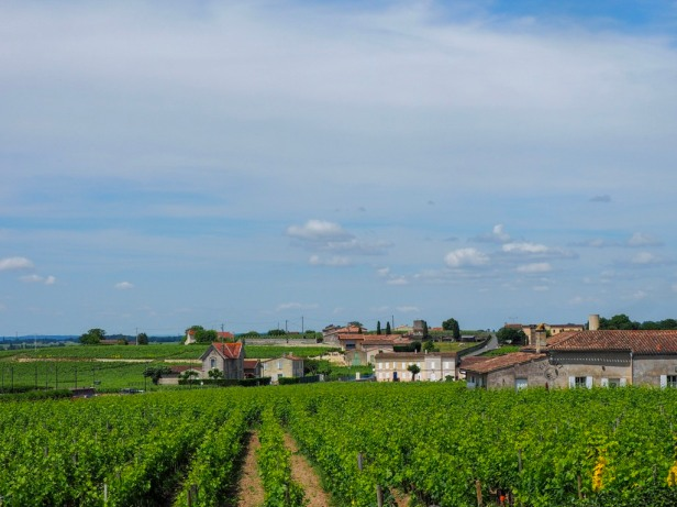 Saint Emilion panoramic view