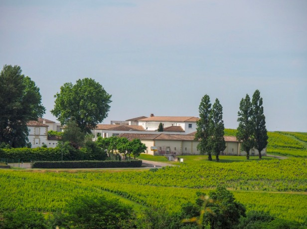 Bordeaux, Vineyards