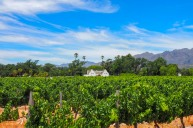 Winelands, Western Cape