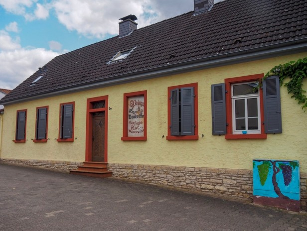 Weingut Dauterman, Ingelheim