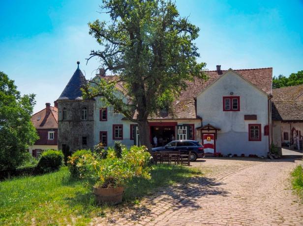 Winery Schloss Westerhaus, Ingelheim