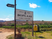 Boplaas Family Vineyards, Klein Karoo