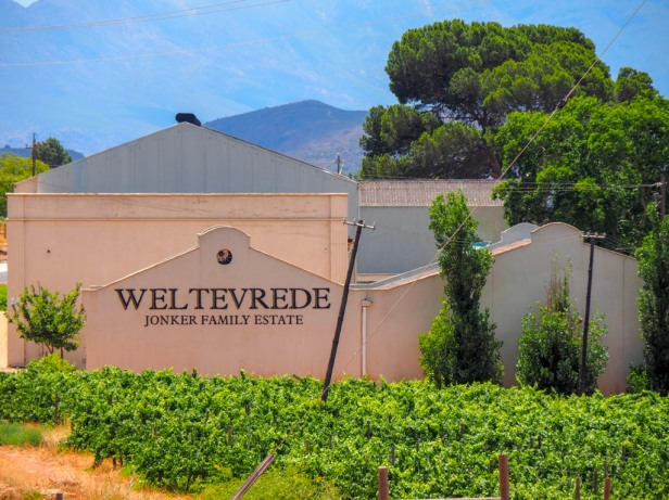 Weltevrede, Robertson Wine Valley