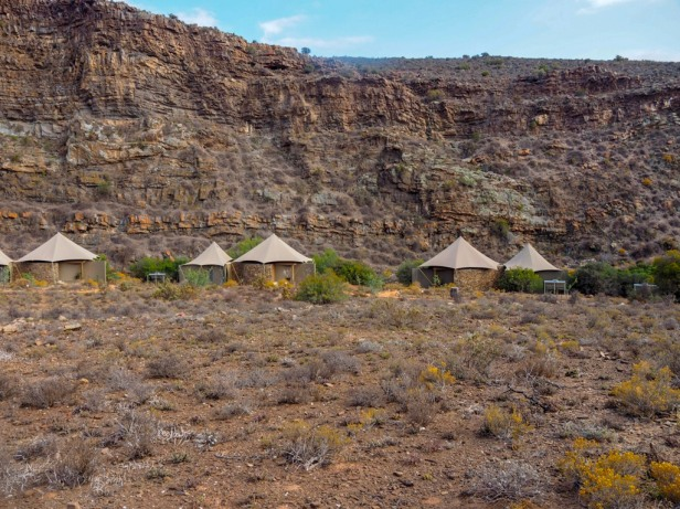 Sanbona Wildlife Resort, Klein Karoo, South Africa