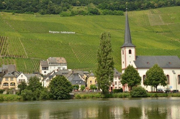 Mosel, Piesport