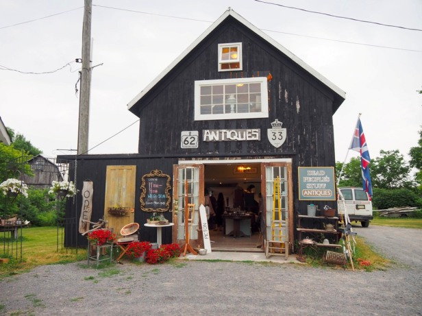 Why I have fallen in love with Prince Edward County, and you will too