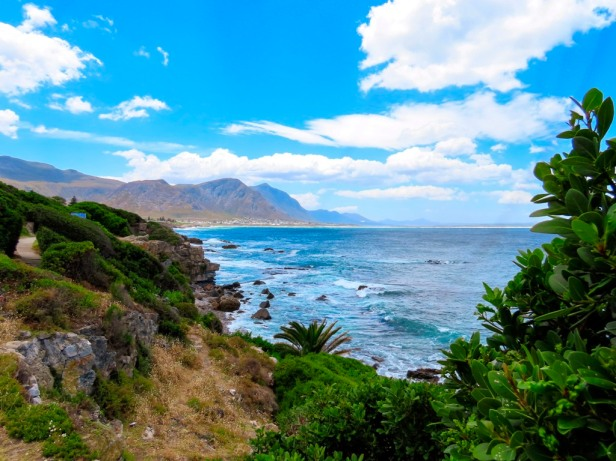 Best things to do in Hermanus beyond whale watching