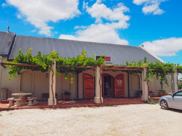 Exploring the Worcester Wine and Olive Route in the breathtaking Breede River Valley