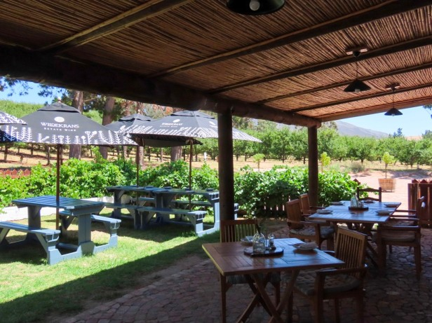 Discover Bot River, hidden gem of the Cape Winelands