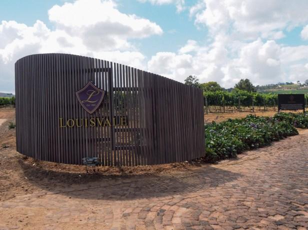 Discovering Louisvale Wines in Stellenbosch