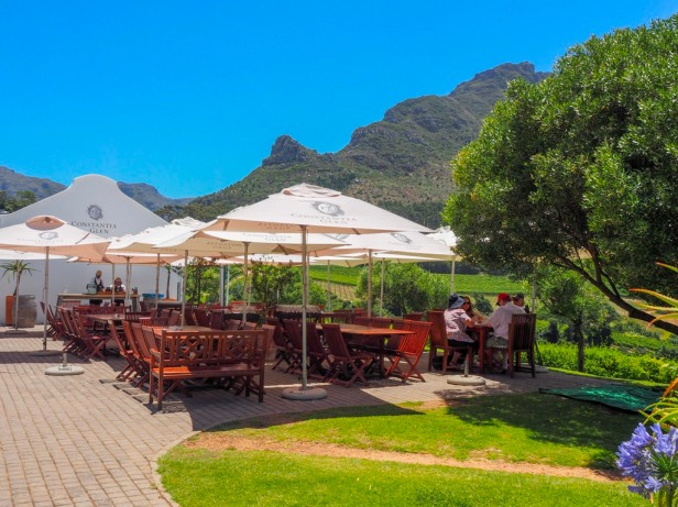 Sauvignon Blanc Wine Route in Constantia: The first varietal specific wine route in the world has launched
