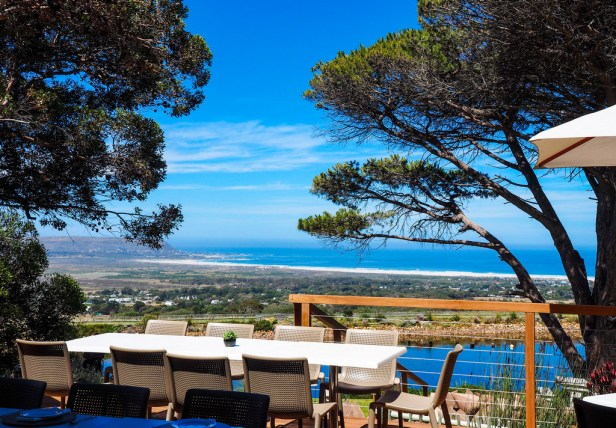 Cape Point Vineyards, South Africa