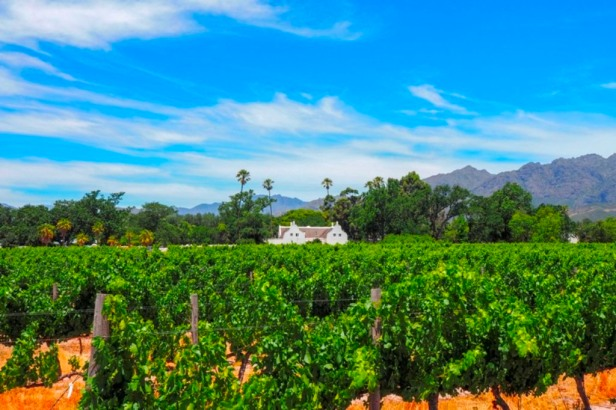 Travelling the Franschhoek Cap Classique Route from home
